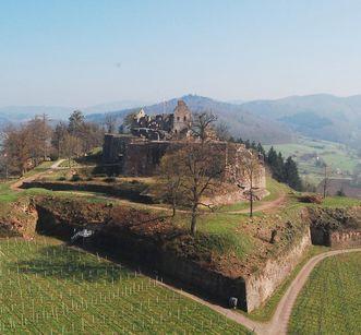 Luftansicht auf die Hochburg bei Emmendingen von Norden; Foto: Axel Brinkmann